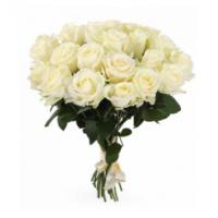 21 Белая роза 60/70 см