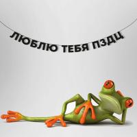 """Гирлянда """"ЛЮБЛЮ ТЕБЯ ПЗДЦ"""" 1 шт"""