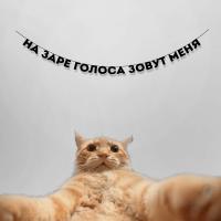 """Гирлянда """"НА ЗАРЕ ГОЛОСА ЗОВУТ МЕНЯ"""" 1 шт"""