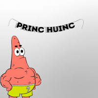 "Гирлянда ""PRINC HUINC"" 1 шт"