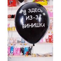 """Оскорбительный шар """"Я ЗДЕСЬ ИЗ-ЗА ВИНИШКА"""" № 44"""